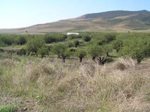 Amaraský klášter uprostřed okolní krajiny